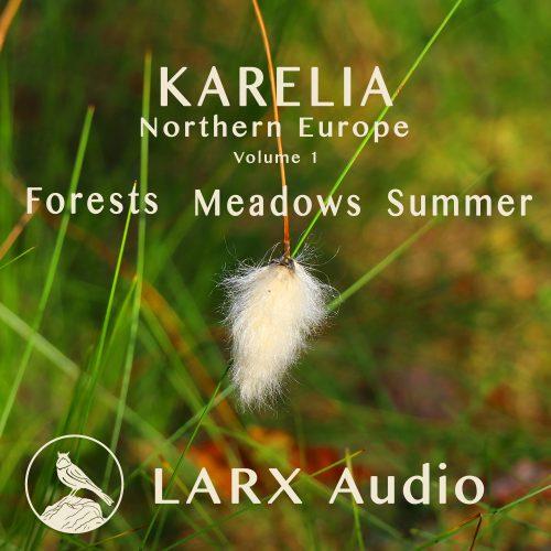 LARX001_Cover